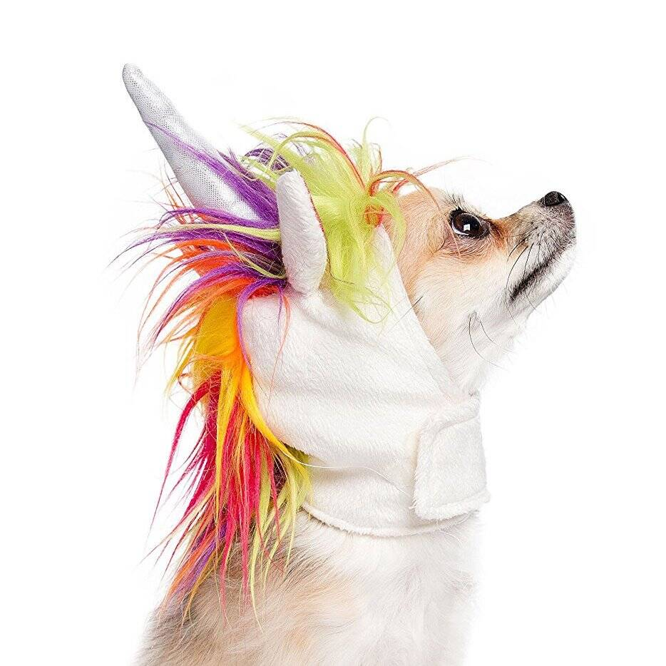 Unicorn Dog Costume - http://coolthings.us