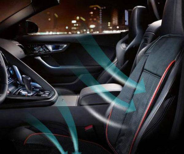 Heating And Cooling Car Seat Cushion - coolthings.us