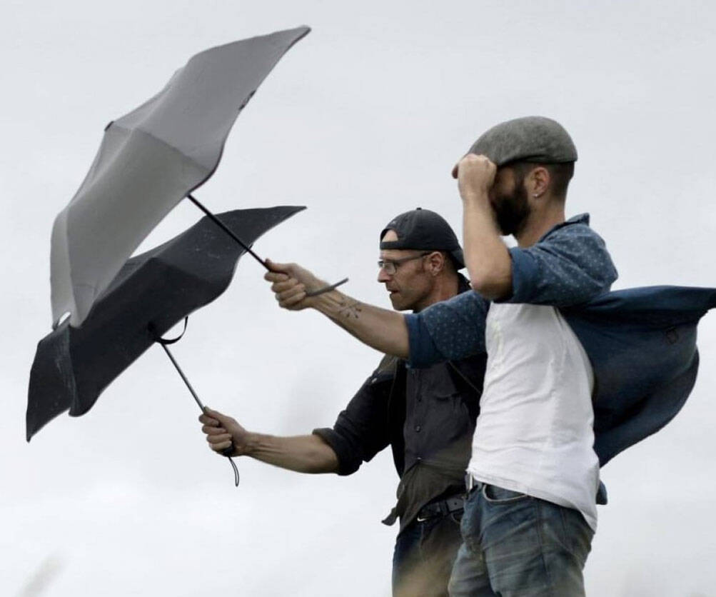 Wind Resistant Storm Umbrella - http://coolthings.us